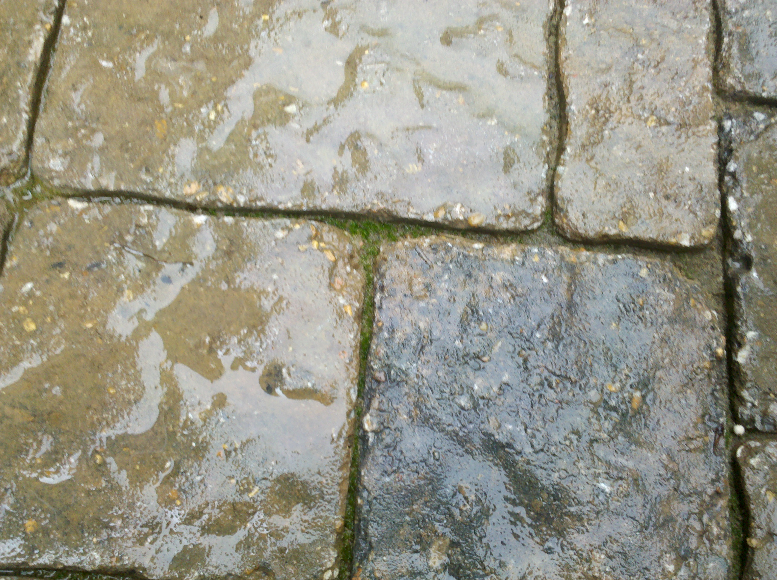 Flat Surface And Concrete Cleaning And Sealing (Concrete, Pavers, Stone,  Exposed Aggregate, Etc.)